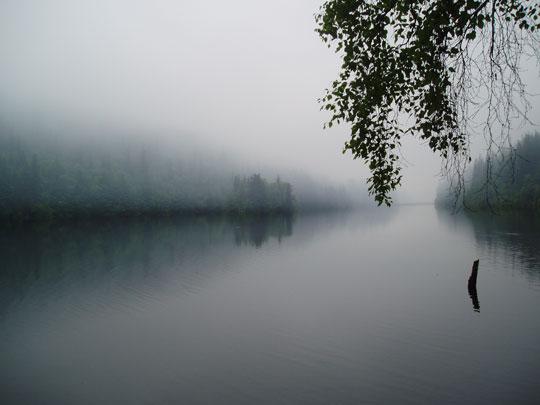 FoggyLake.jpg