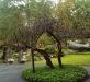 TreeRepair.jpg